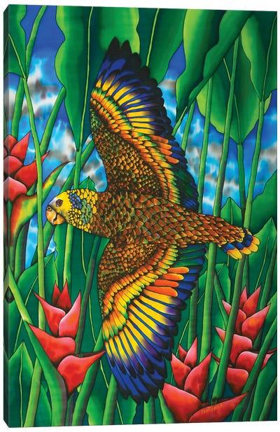 Saint Vincent Amazon Canvas Art Print