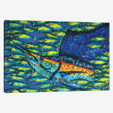 Sailfish & Bait Fish Canvas Print #JBT73} by Daniel Jean-Baptiste Canvas Wall Art
