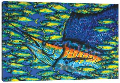 Sailfish & Bait Fish Canvas Art Print