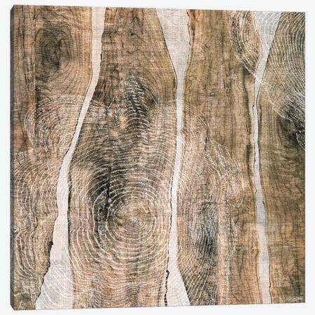 Live Edge III Canvas Print #JBU12} by John Butler Art Print