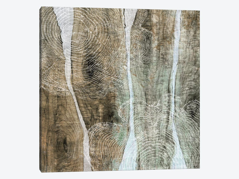 Live Edge IV by John Butler 1-piece Canvas Wall Art