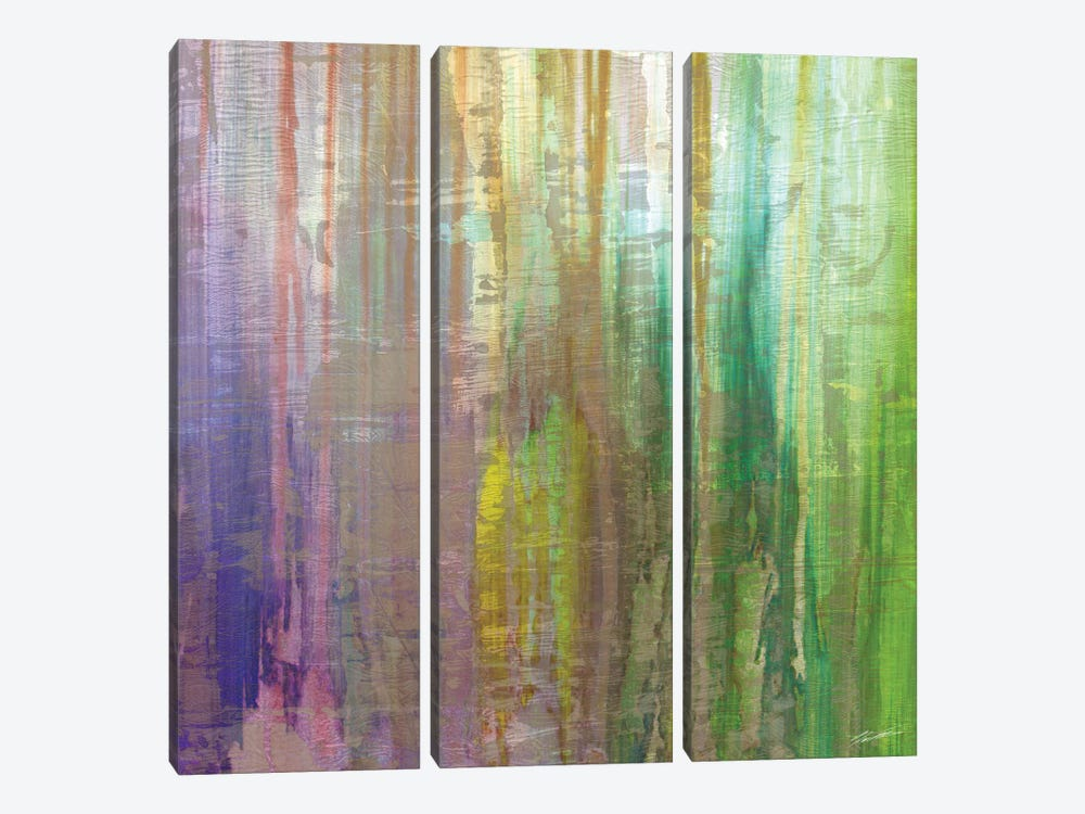 Rushes IV by John Butler 3-piece Canvas Wall Art
