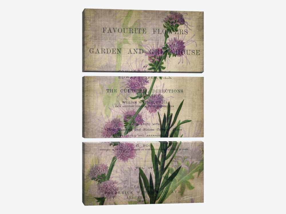 Favorite Flowers I by John Butler 3-piece Canvas Print