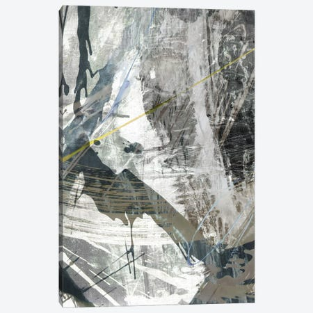 White Noise I Canvas Print #JBU23} by John Butler Canvas Art