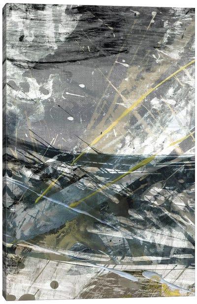 White Noise II Canvas Art Print