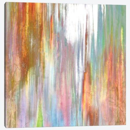 Mislead I Canvas Print #JBU29} by John Butler Canvas Artwork