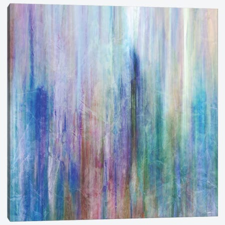 Mistify I Canvas Print #JBU31} by John Butler Art Print