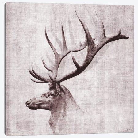 Open Range II 3-Piece Canvas #JBU34} by John Butler Canvas Wall Art