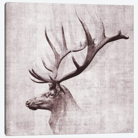 Open Range II Canvas Print #JBU34} by John Butler Canvas Wall Art