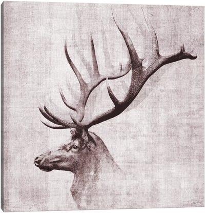 Open Range II Canvas Art Print