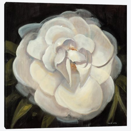 Flower II 3-Piece Canvas #JCA20} by Joseph Cates Art Print
