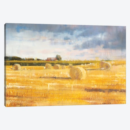 Swedish Field Canvas Print #JCA29} by Joseph Cates Canvas Art Print