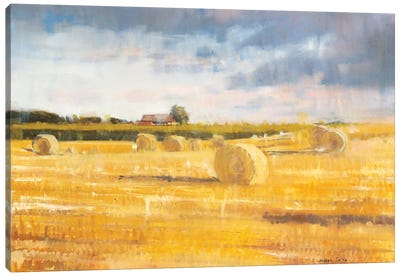 Swedish Field Canvas Art Print