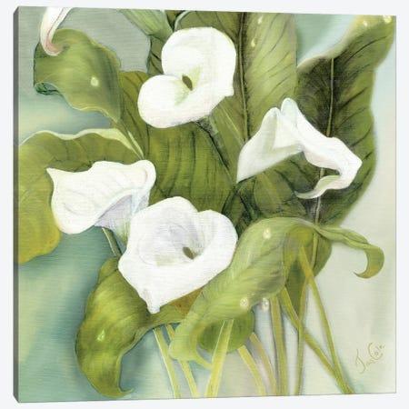 Tropical Callas Canvas Print #JCE3} by Jan Cole Canvas Art Print
