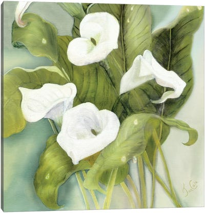 Tropical Callas Canvas Art Print