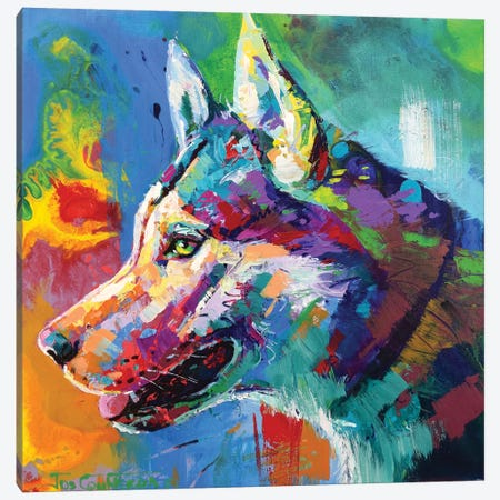 Husky Malamute Canvas Print #JCF102} by Jos Coufreur Canvas Artwork