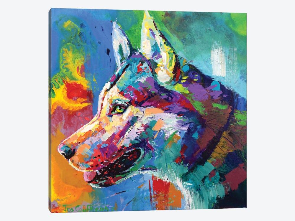 Husky Malamute by Jos Coufreur 1-piece Canvas Art