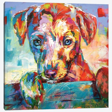 Jack Russell Puppy Looking Over Fence Canvas Print #JCF103} by Jos Coufreur Canvas Art