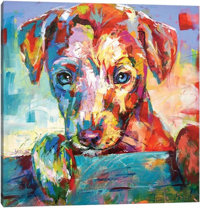 Jack Russell Puppy Looking Over Fence Canvas Art Print