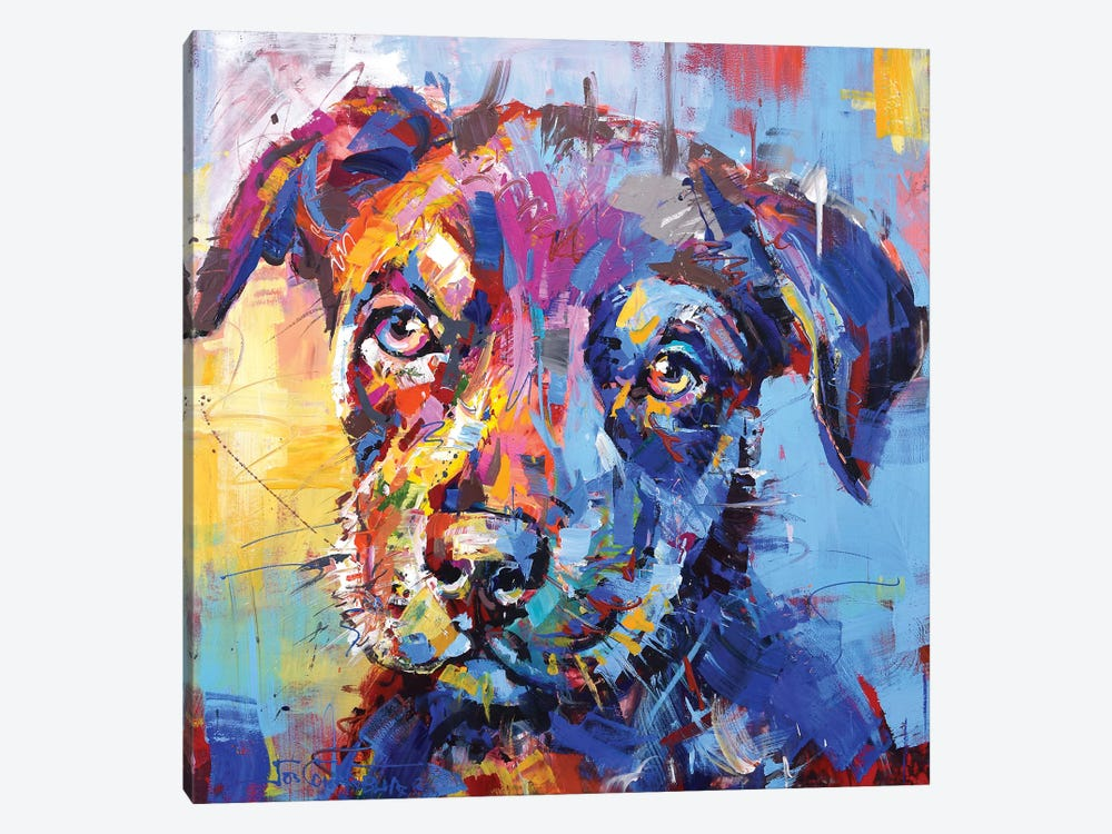 Kelpie by Jos Coufreur 1-piece Canvas Wall Art