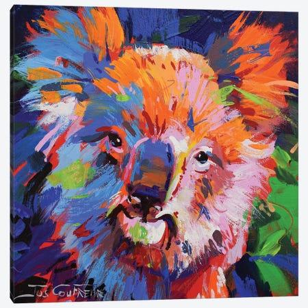Koala IX Canvas Print #JCF105} by Jos Coufreur Art Print
