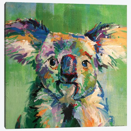 Koala III Canvas Print #JCF106} by Jos Coufreur Canvas Art Print