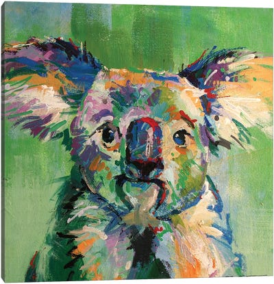 Koala III Canvas Art Print