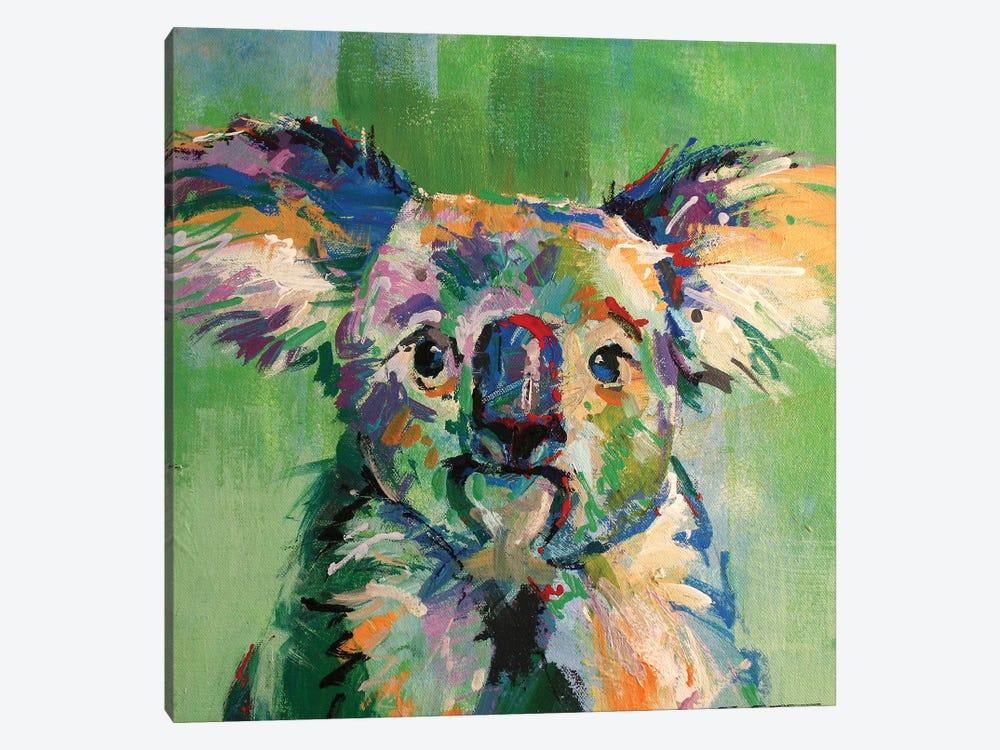 Koala III by Jos Coufreur 1-piece Canvas Wall Art