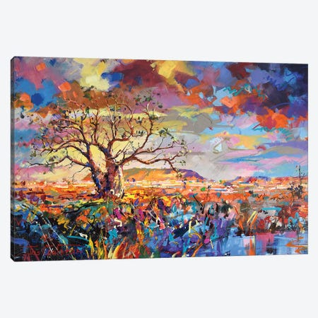 Boab Trees III Canvas Print #JCF10} by Jos Coufreur Canvas Print