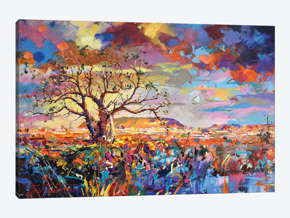 Boab Trees III by Jos Coufreur 1-piece Canvas Art