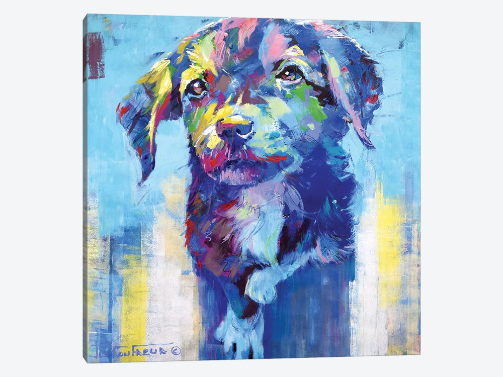 Cute Dog by Jos Coufreur 1-piece Canvas Print