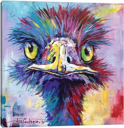 Emu II Canvas Art Print