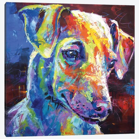 Greyhound Puppy Canvas Print #JCF122} by Jos Coufreur Canvas Wall Art