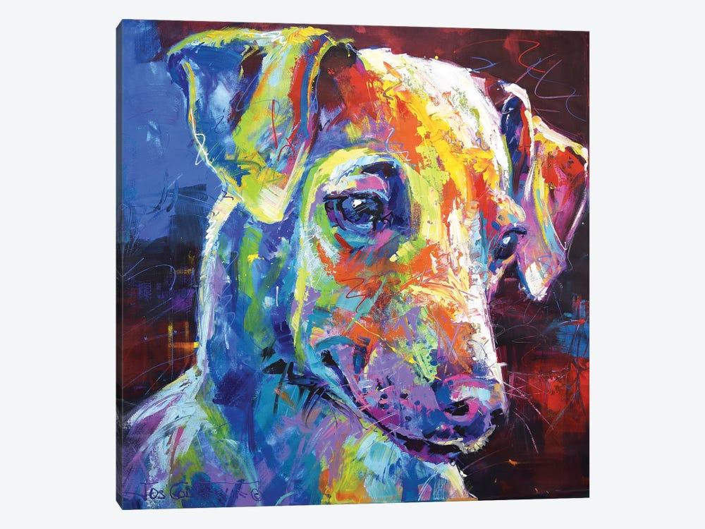 Greyhound Puppy by Jos Coufreur 1-piece Canvas Artwork