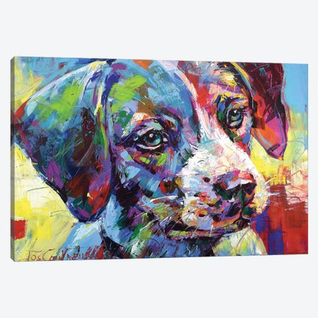 Jack Russell Puppy 3-Piece Canvas #JCF125} by Jos Coufreur Canvas Art Print