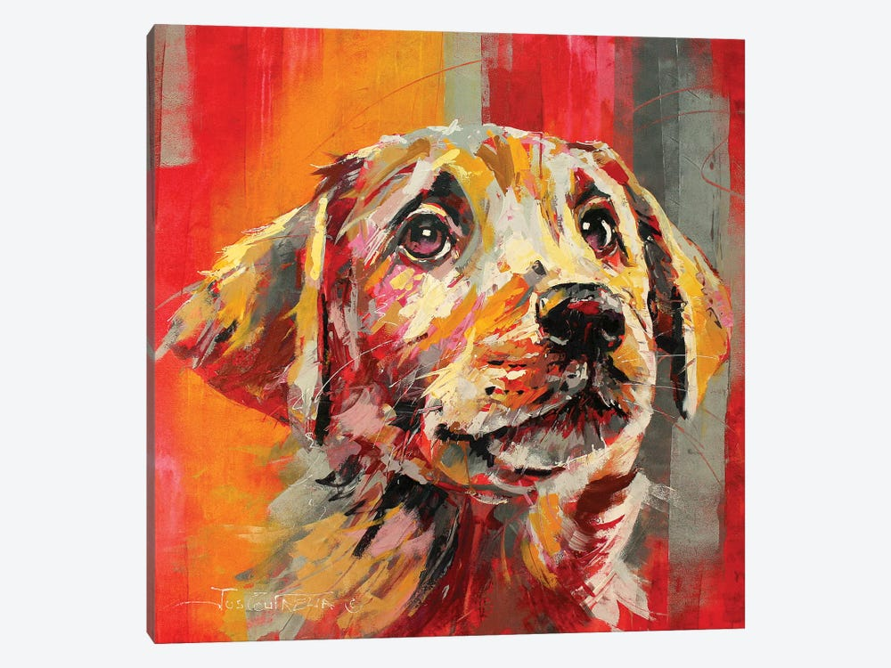 Labrador I by Jos Coufreur 1-piece Canvas Wall Art