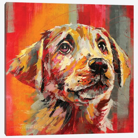 Labrador I Canvas Print #JCF128} by Jos Coufreur Canvas Wall Art