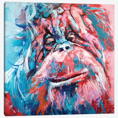 Orangutan Canvas Print #JCF134} by Jos Coufreur Canvas Wall Art