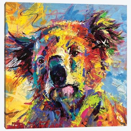 Koala Canvas Print #JCF146} by Jos Coufreur Canvas Print