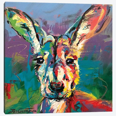 Kangaroo III Canvas Print #JCF148} by Jos Coufreur Canvas Artwork