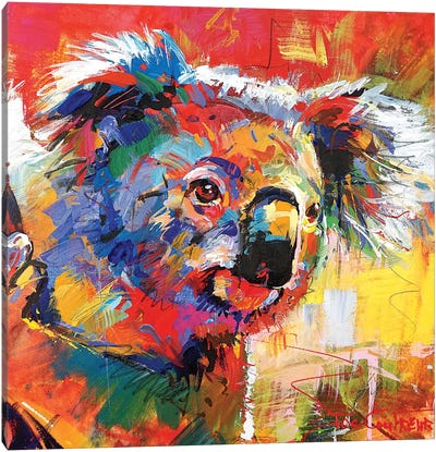 Koala XI Canvas Art Print