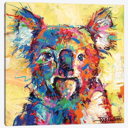 Hello Koala Canvas Print #JCF154} by Jos Coufreur Canvas Wall Art