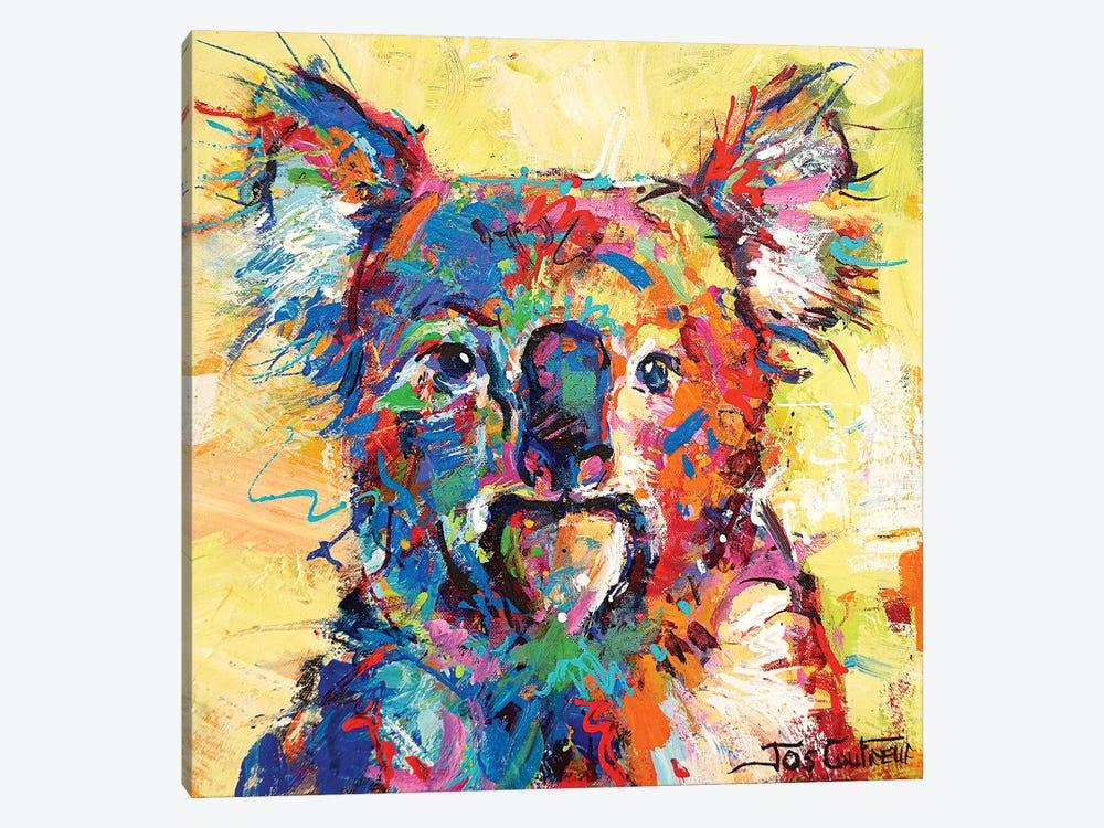 Hello Koala by Jos Coufreur 1-piece Art Print