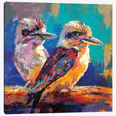 Pair Of Kookaburras Canvas Print #JCF158} by Jos Coufreur Art Print