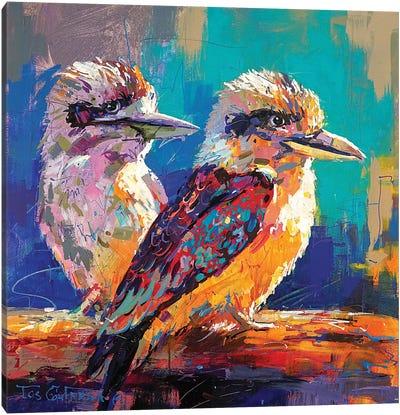 Pair Of Kookaburras Canvas Art Print