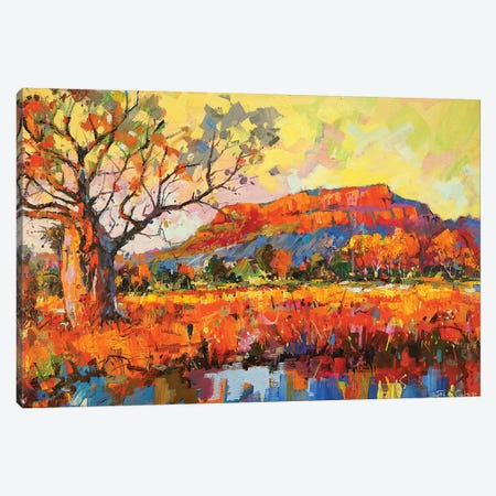 Golden Outback Canvas Print #JCF159} by Jos Coufreur Canvas Print