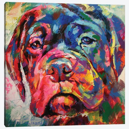 Bull Mastiff Puppy Canvas Print #JCF15} by Jos Coufreur Canvas Artwork