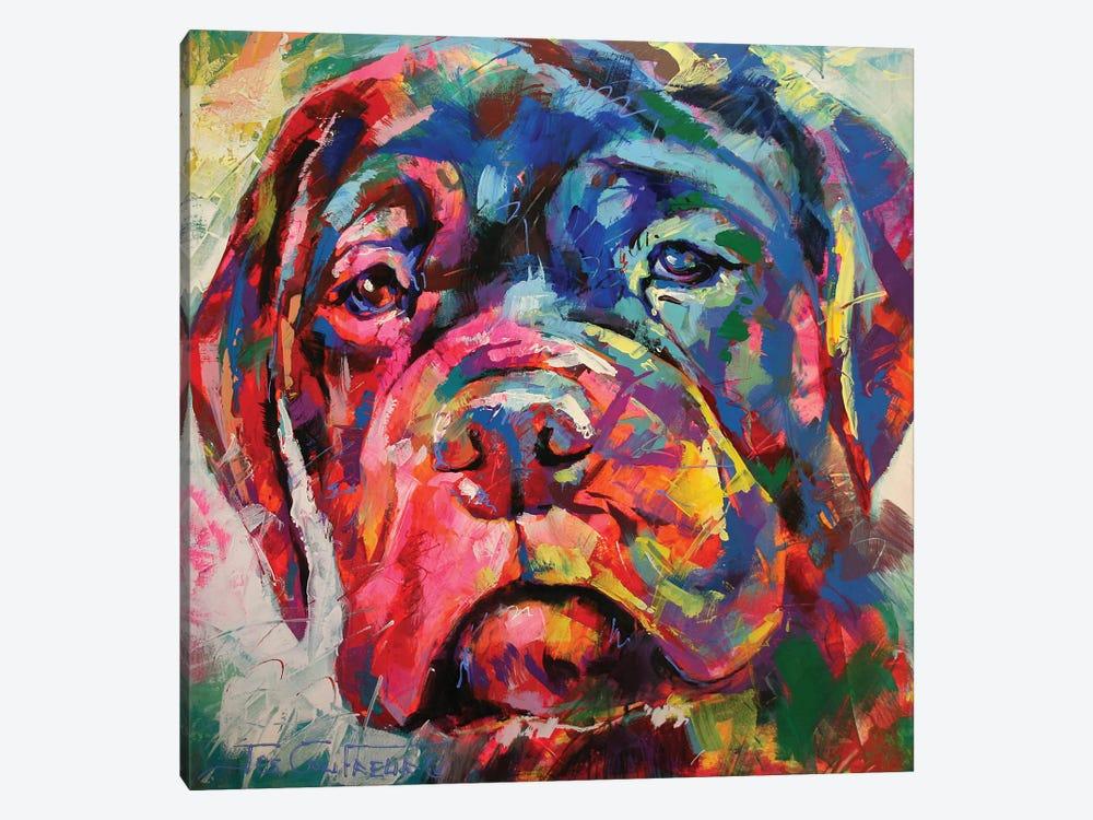 English Picture Print Bullmastiff Dog Dogs Puppy Puppies Vintage Poster Art