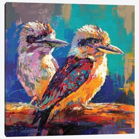 Kookaburra Pair Canvas Print #JCF164} by Jos Coufreur Canvas Print