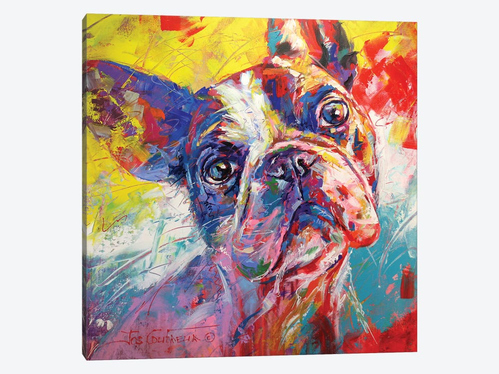 French Bulldog by Jos Coufreur 1-piece Canvas Print